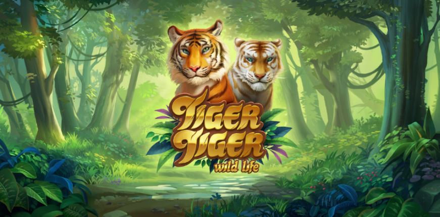 Tiger Tiger: Wild Life .. Here is the latest news from Yggdrasil